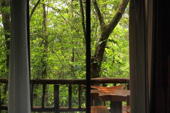 Tree Houses Hotel Costa Rica: View on the balcony