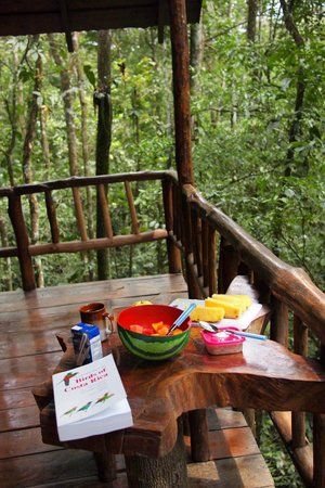 Tree Houses Hotel Costa Rica: Balcony