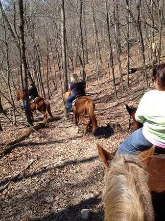 Mammoth Cave Adventures: in April