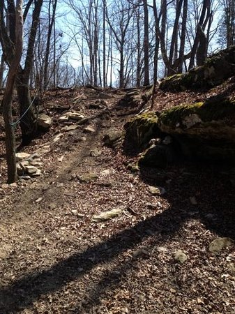 Mammoth Cave Adventures: riding up this hill was quite and adventure. Wear long pants!