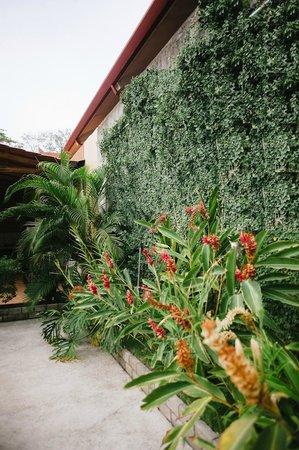 TamarindoVille by Tamarindo Inn: garden relaxing zone