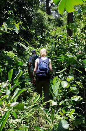 Kurakura Homestay: Jungletrek