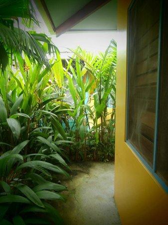 Hotel Guarana: Outside our room