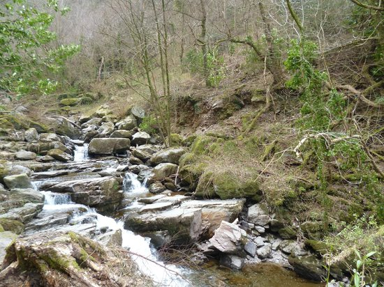 Glen Lyn Gorge: Seven Steps