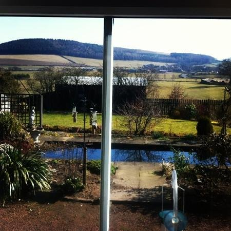 The Old Manse Chatton: morning view from the kitchen