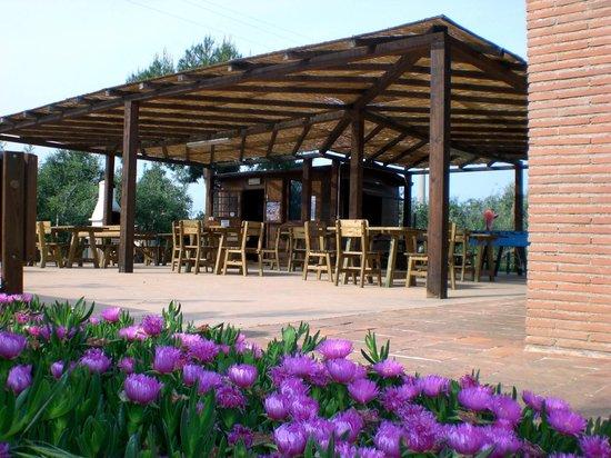 Residence Podere San Giuseppe: l'area ristoro