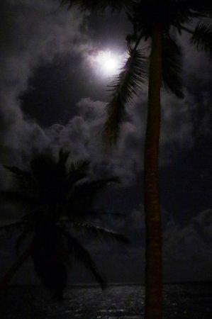 Coconut Bay Beach Resort & Spa: moon light beach