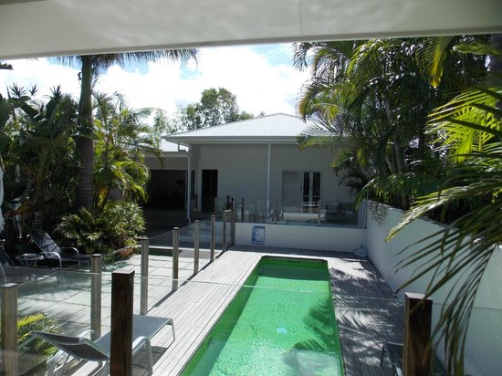 Byron Cove Beach House : Ants at the pool too