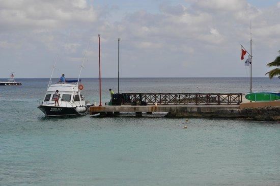 Presidente Inter-Continental Cozumel Resort & Spa: Scuba Du pier