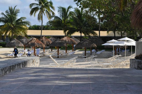 Presidente Inter-Continental Cozumel Resort & Spa: Walk to pool