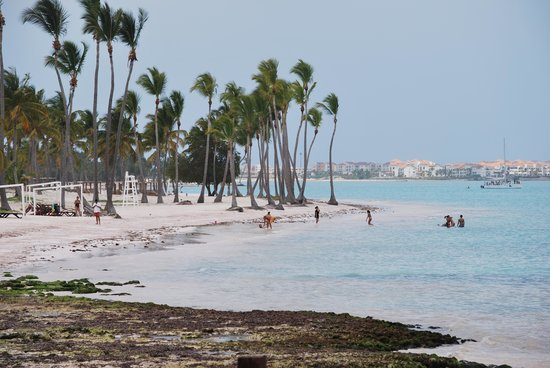 Sanctuary Cap Cana by AlSol: View of Public beach adjacent from property