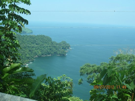 Scenic Road to Maracas Bay
