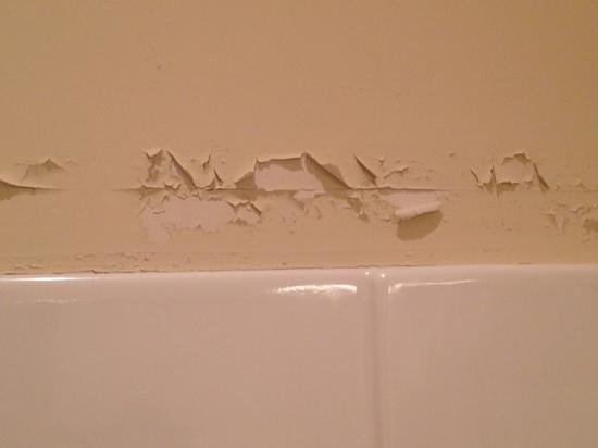 Litchfield Beach & Golf Resort: paint on bathroom wall