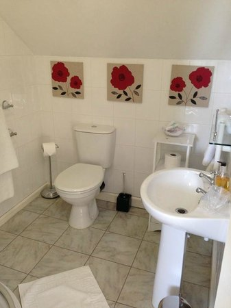 Arandale Guest House: Bright, clean and classy bathroom.