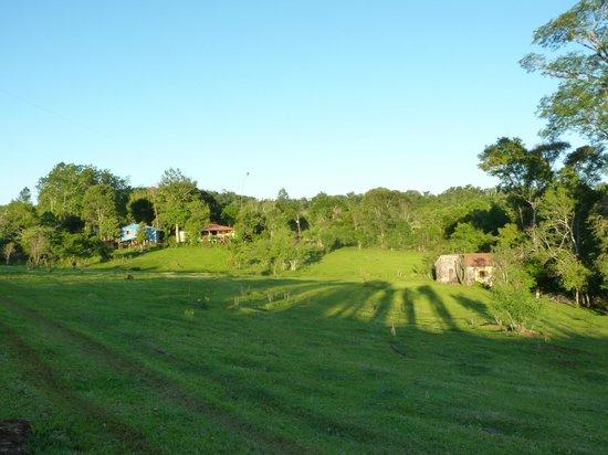 Posada La Bonita : El jardin y las cabañas