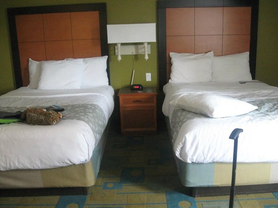 La Quinta Inn & Suites Orlando Convention Center: beds