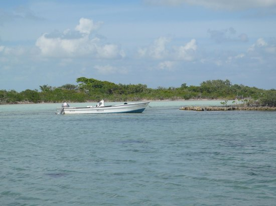 El Pescador Resort: Our fishing boat