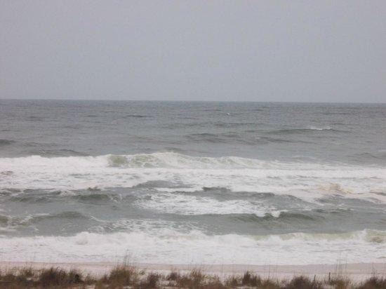 Navarre Beach : Gulf