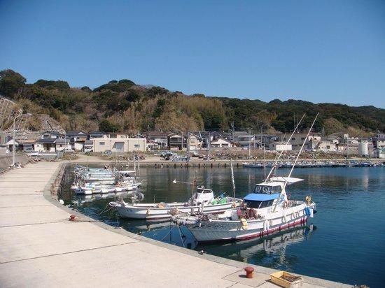 Shikanoshima : 漁港