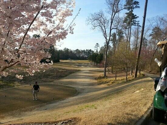 Finley Golf Course: Finley course in spring