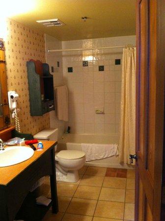 Tour des Voyageurs: bathroom