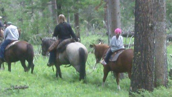 Crossed Sabres Ranch : horseback riding