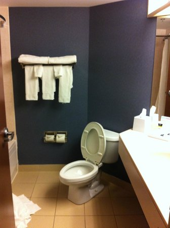 Four Points by Sheraton Halifax : bathroom
