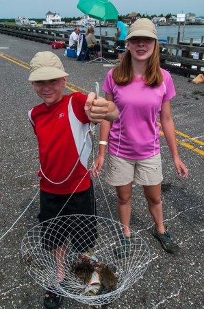 North Wildwood Beach: Crabbing Nearby in North Wilwood