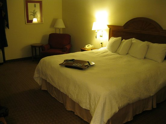 Hampton Inn Charleston North : Our room