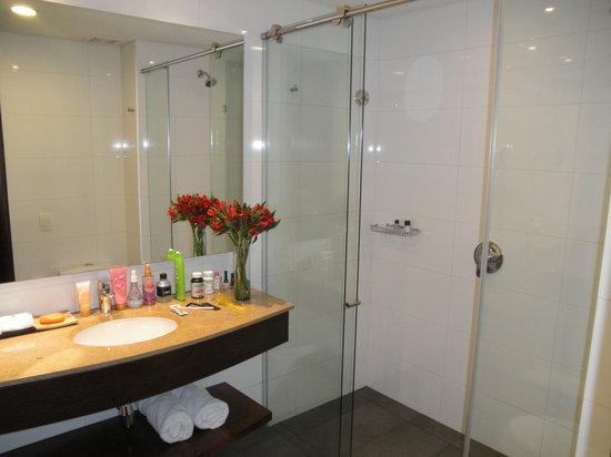 Morrison 114 Hotel: Powerful shower