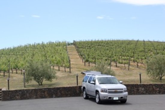Perata Luxury Tours: Sitting one the Napa/Sonoma County Line at Pride Mnt. Vineyard
