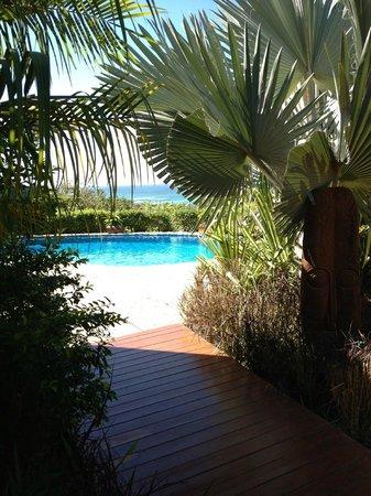 Casa Chameleon Hotel: Beautiful landscaped areas/pool