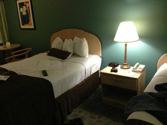 Ramada Tampa Airport Westshore: bed