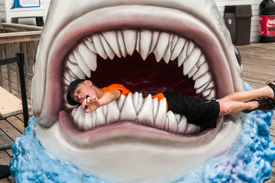 Morey's Piers and Beachfront Water Parks : Shark Got A Hold of Son