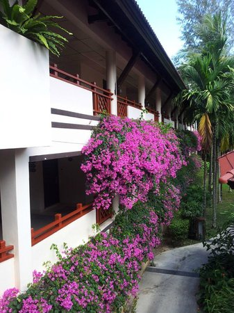 Laguna Holiday Club Phuket Resort: Just some flowers