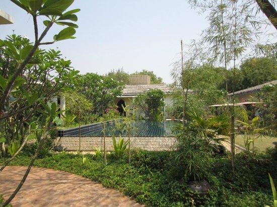 Blue Bird Hotel : Pool view