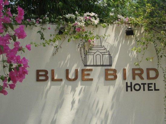 Blue Bird Hotel : Entrance