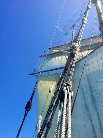 R. Tucker Thompson: magnificent sails!