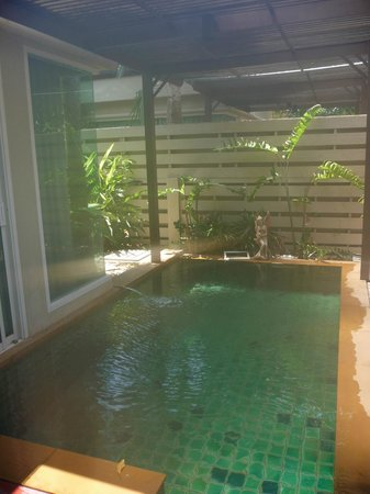 Pilanta Spa Resort: Private plunge pool for Spa Villa