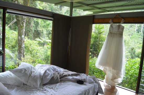 Crystal Creek Rainforest Retreat: Great views from the bedroom