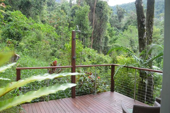 Crystal Creek Rainforest Retreat : Outdoor shower