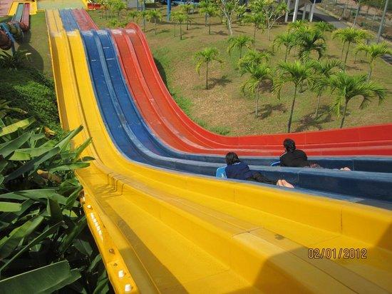 Melaka Wonderland: Kamikaze racer