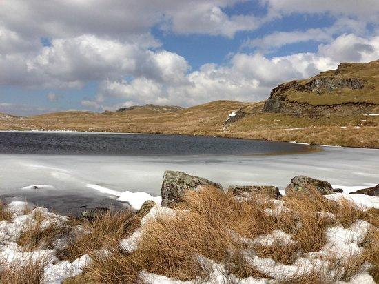 Maelgwyn House Bed & Breakfast: Lac gelé dans le Snowdonia Parc