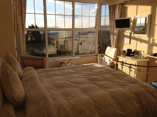 Maelgwyn House Bed & Breakfast: La chambre