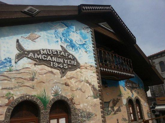 Mustafa Amcanin Yeri: Mekan