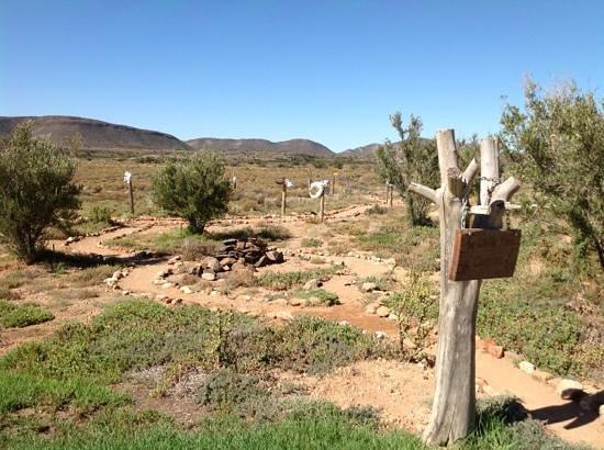 Sanbona Wildlife Reserve: skull garden