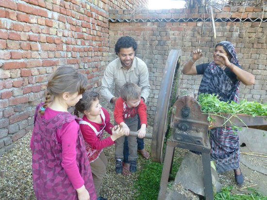 Atmajyoti Farm and Homestay: Vie à la ferme
