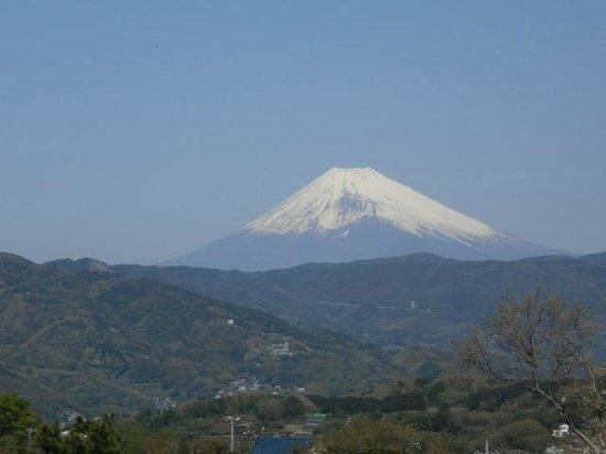 Komuroyama Park: 頂上よりの富士山