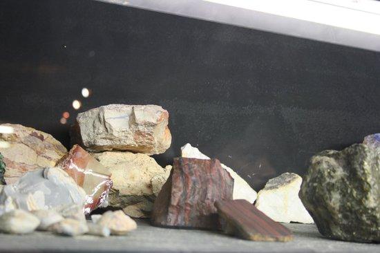 Umoona Opal Mine & Museum: Museum