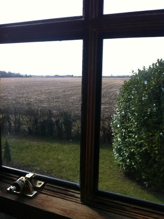 Providence Place Bed & Breakfast: View of fields from window